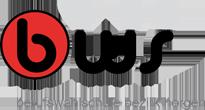 BWS - Berufswahlschule Bezirk Horgen Logo